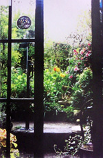 Window showing the view from the kitchen to the garden